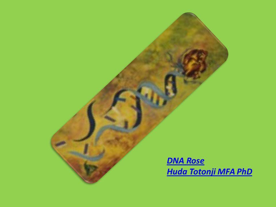 DNA Rose Huda Totonji MFA PhD