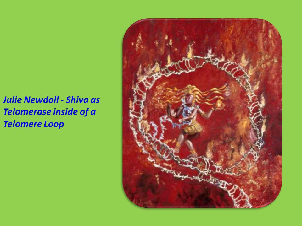 Julie Newdoll - Shiva as Telomerase inside of a Telomere Loop