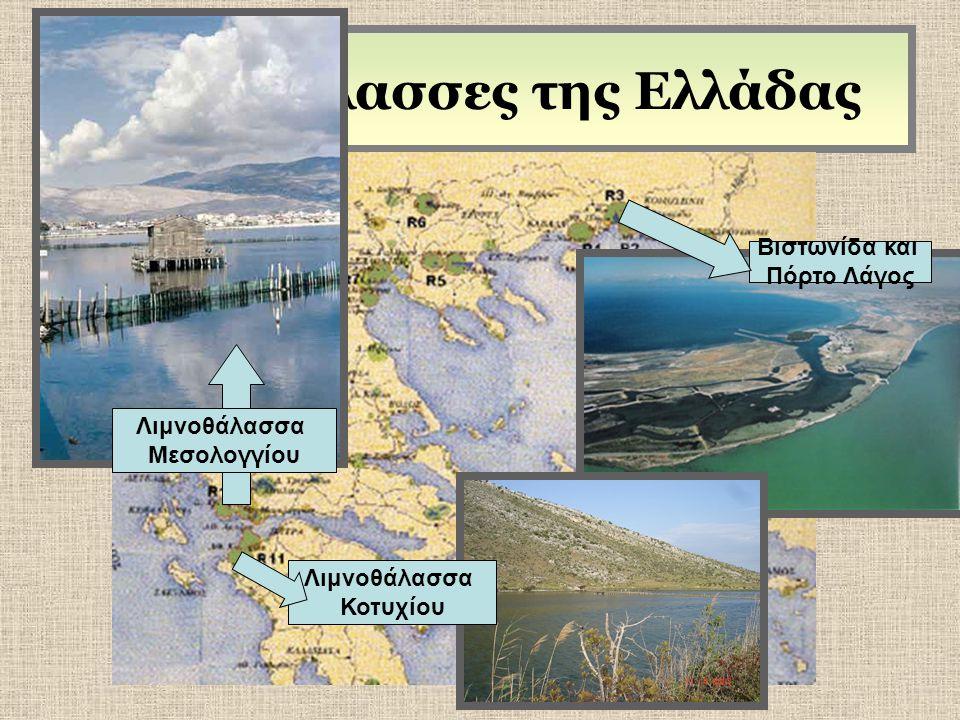 Λιμνοθάλασσες της Ελλάδας