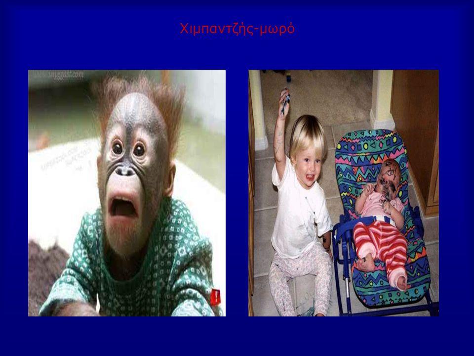Χιμπαντζής-μωρό