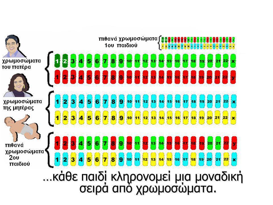 …κάθε παιδί κληρονομεί μια μοναδική σειρά από χρωμοσώματα.