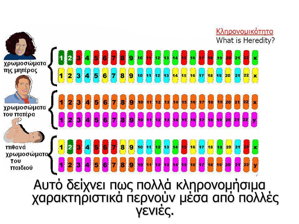 Κληρονομικότητα What is Heredity.