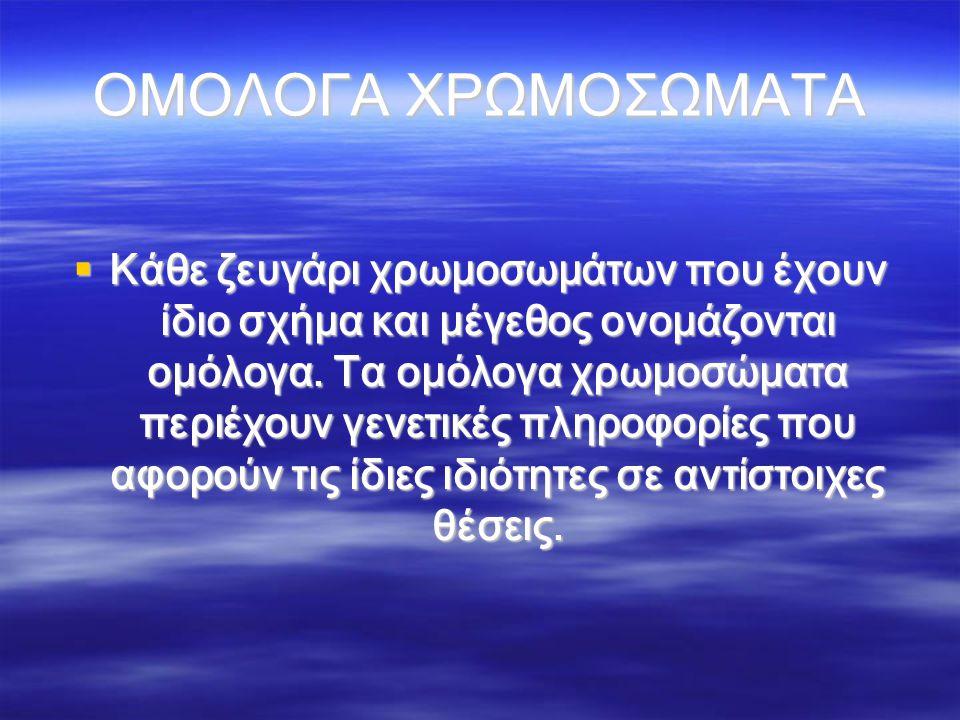 ΟΜΟΛΟΓΑ ΧΡΩΜΟΣΩΜΑΤΑ