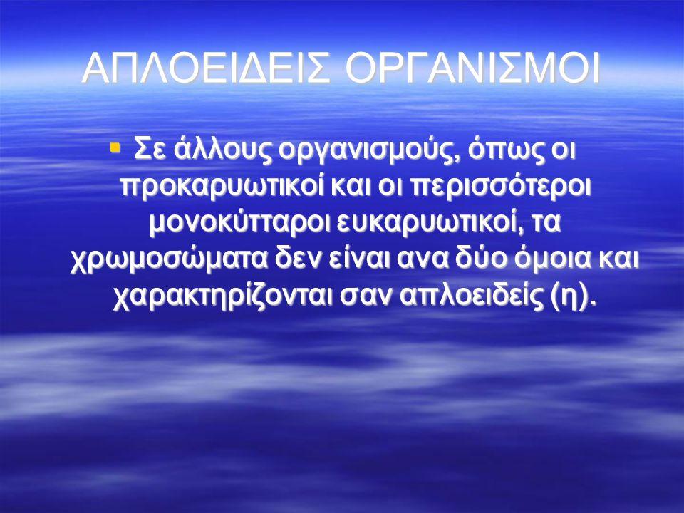 ΑΠΛΟΕΙΔΕΙΣ ΟΡΓΑΝΙΣΜΟΙ