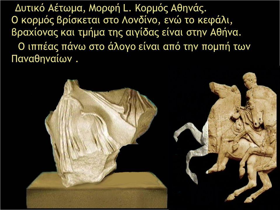 Δυτικό Αέτωμα, Μορφή L. Κορμός Αθηνάς