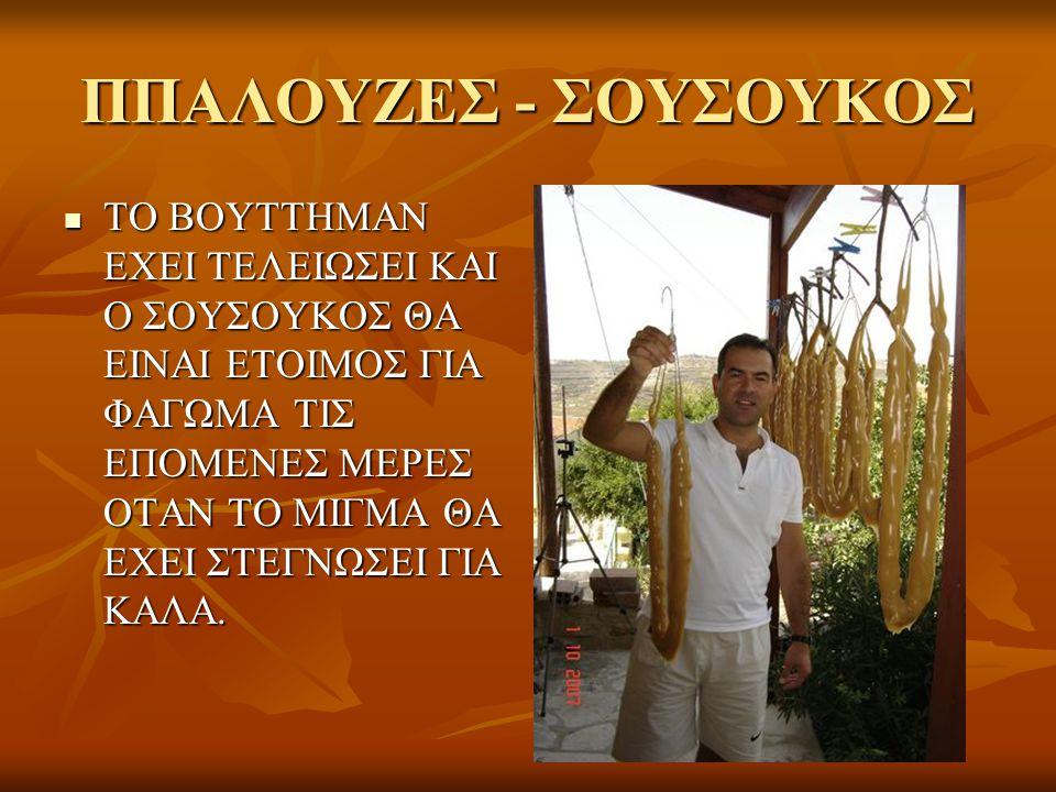 ΠΠΑΛΟΥΖΕΣ - ΣΟΥΣΟΥΚΟΣ