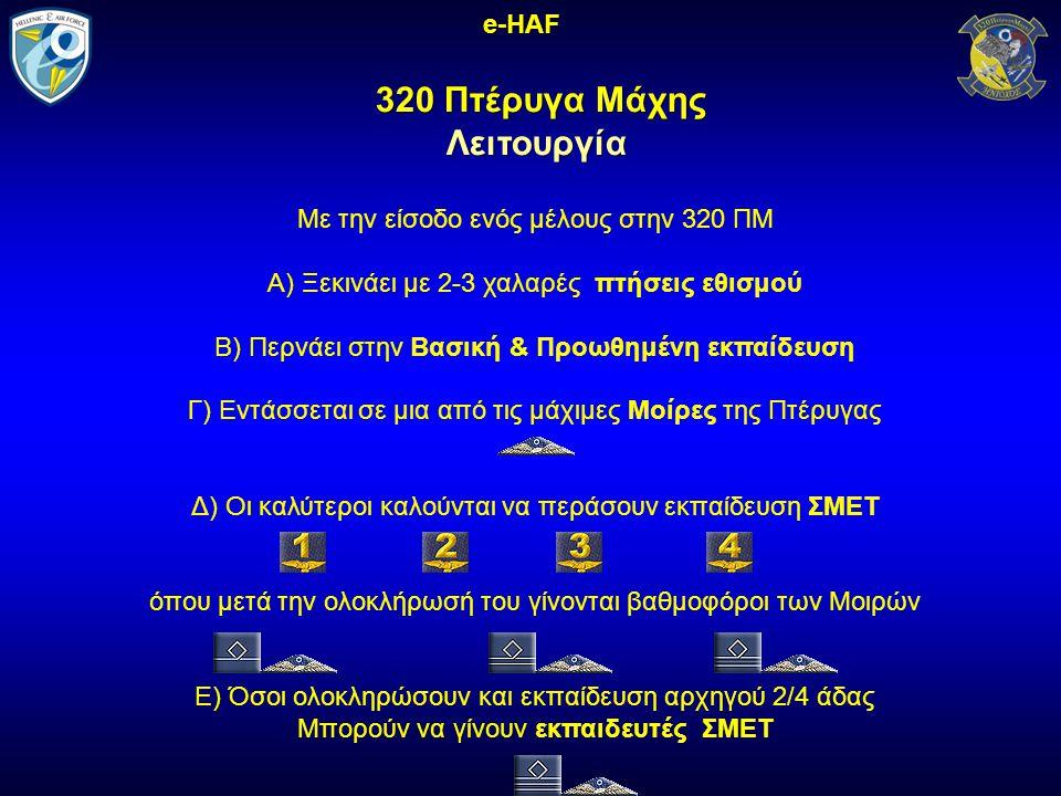 320 Πτέρυγα Μάχης Λειτουργία