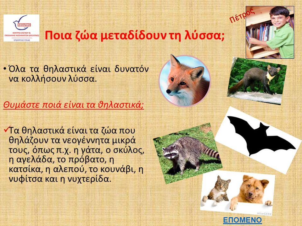 Ποια ζώα μεταδίδουν τη λύσσα;