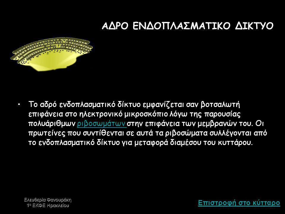 ΑΔΡΟ ΕΝΔΟΠΛΑΣΜΑΤΙΚΟ ΔΙΚΤΥΟ