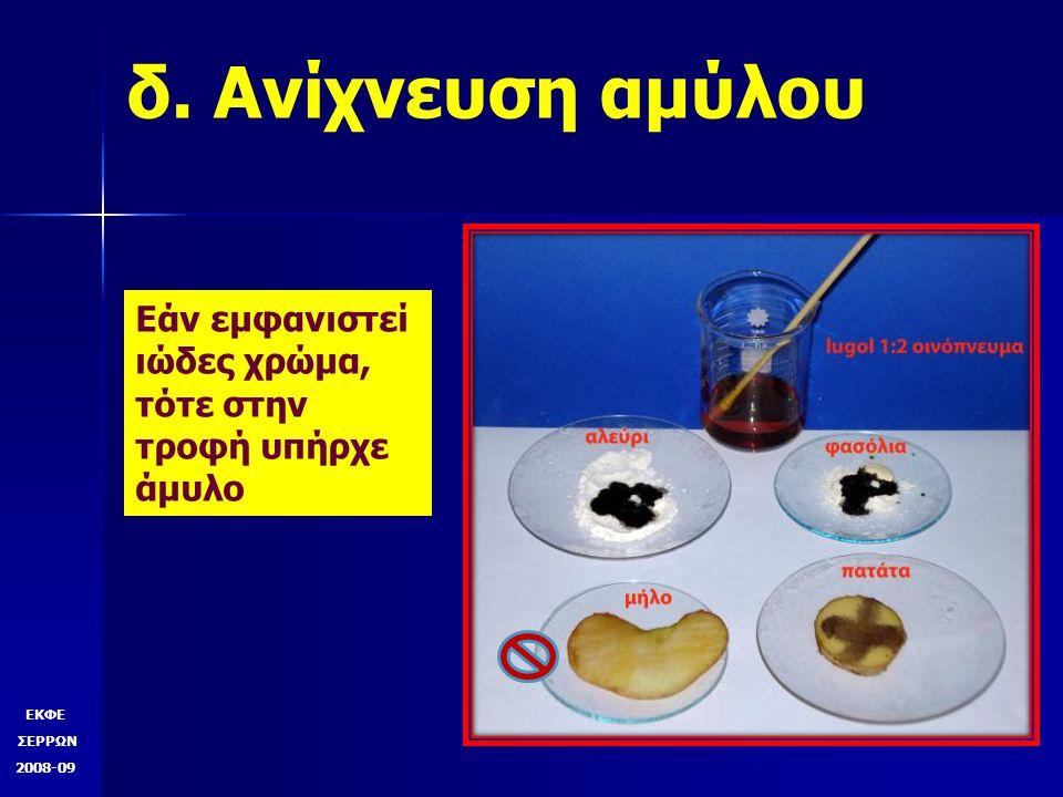δ. Ανίχνευση αμύλου Εάν εμφανιστεί ιώδες χρώμα, τότε στην τροφή υπήρχε άμυλο. ουμς. ΕΚΦΕ. ΣΕΡΡΩΝ.