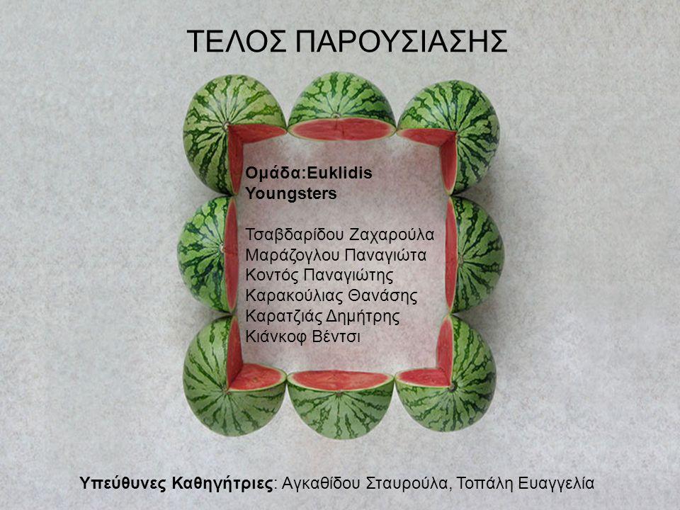 ΤΕΛΟΣ ΠΑΡΟΥΣΙΑΣΗΣ Ομάδα:Euklidis Youngsters Τσαβδαρίδου Ζαχαρούλα