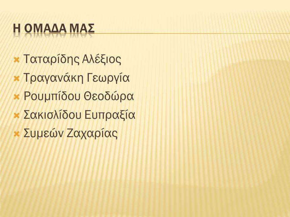 Η ομαδα μαΣ Ταταρίδης Αλέξιος. Τραγανάκη Γεωργία.
