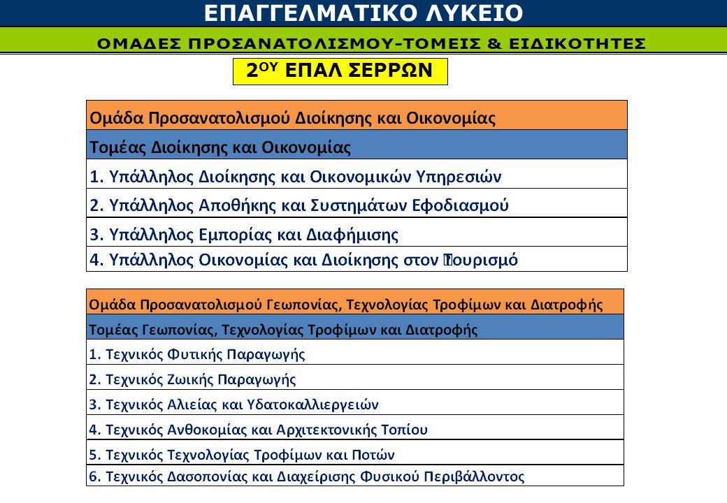 ΕΠΑΓΓΕΛΜΑΤΙΚΟ ΛΥΚΕΙΟ 2ΟΥ ΕΠΑΛ ΣΕΡΡΩΝ