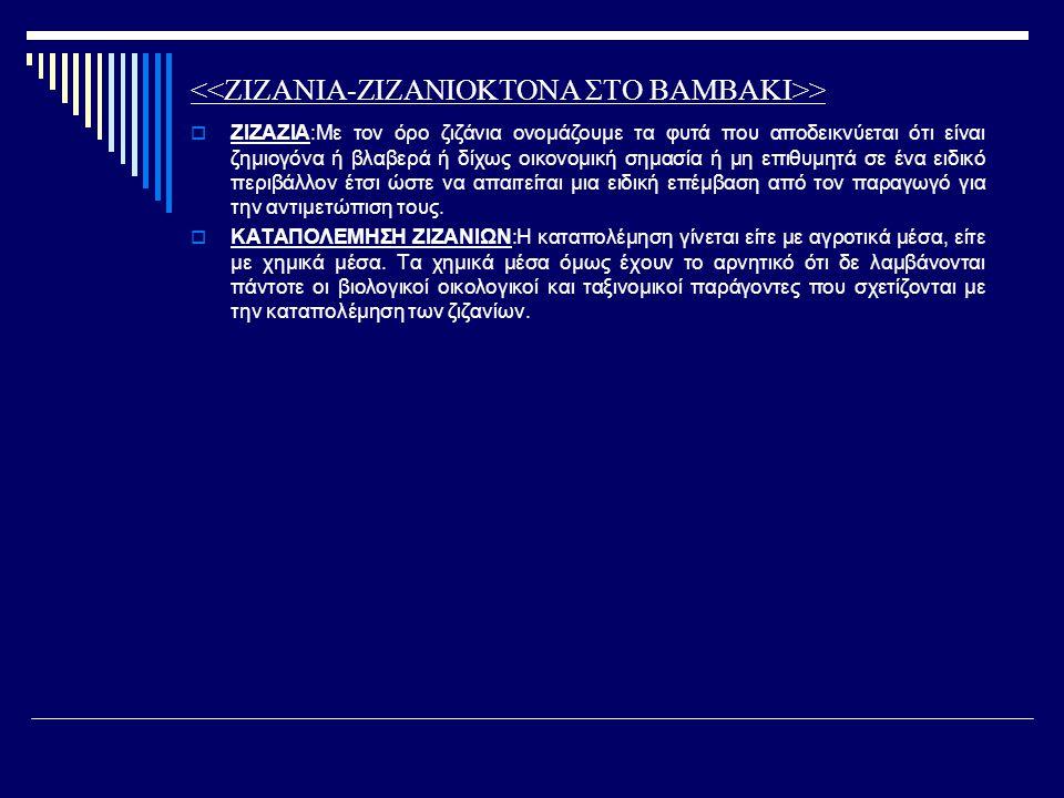 <<ΖΙΖΑΝΙΑ-ΖΙΖΑΝΙΟΚΤΟΝΑ ΣΤΟ ΒΑΜΒΑΚΙ>>
