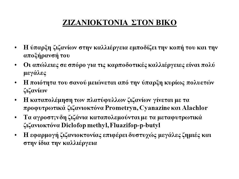 ΖΙΖΑΝΙΟΚΤΟΝΙΑ ΣΤΟΝ ΒΙΚΟ