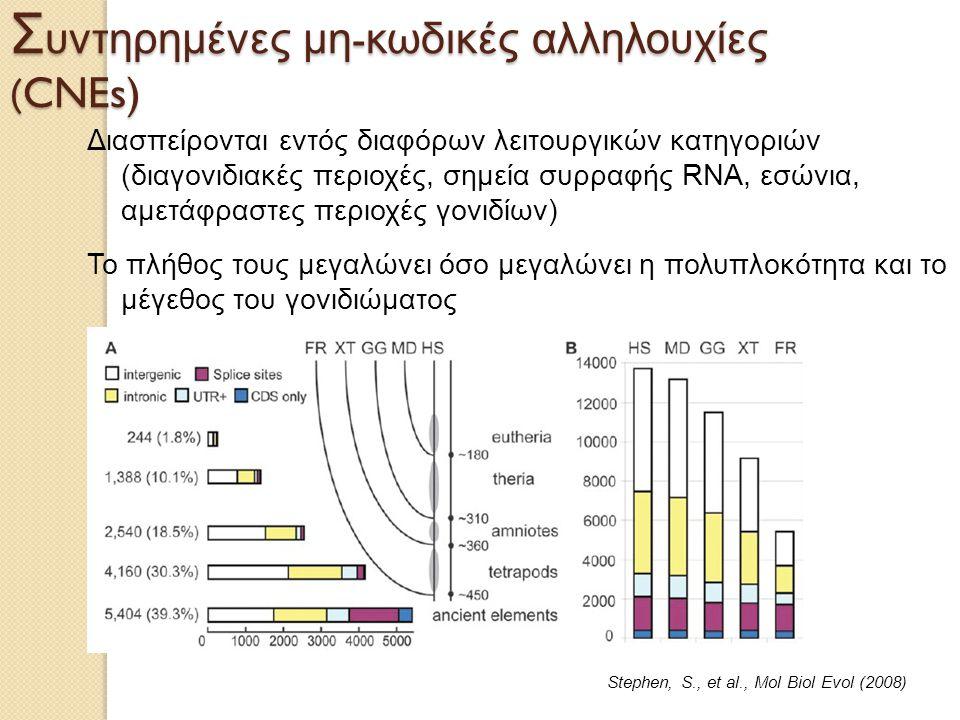 Συντηρημένες μη-κωδικές αλληλουχίες (CNEs)