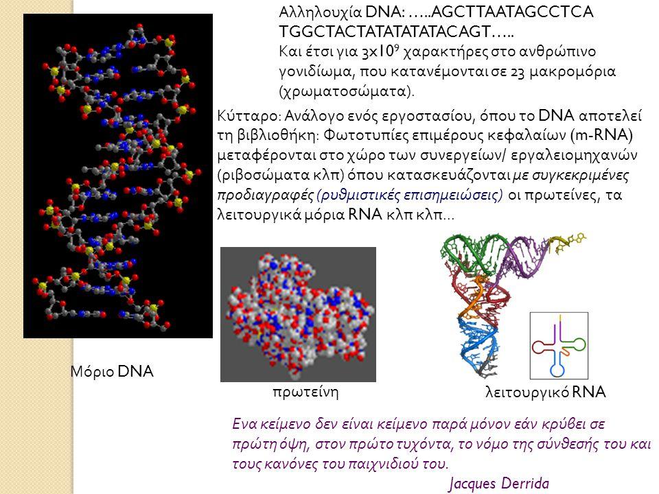 Αλληλουχία DNA: …..AGCTTAATAGCCTCA