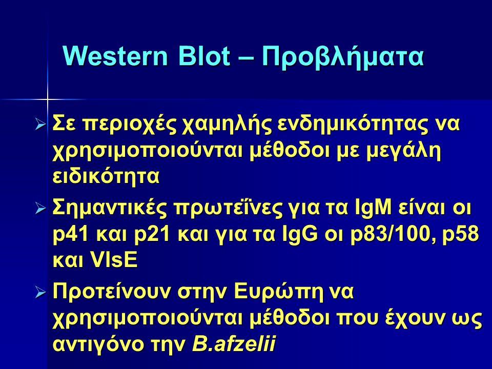 Western Blot – Προβλήματα