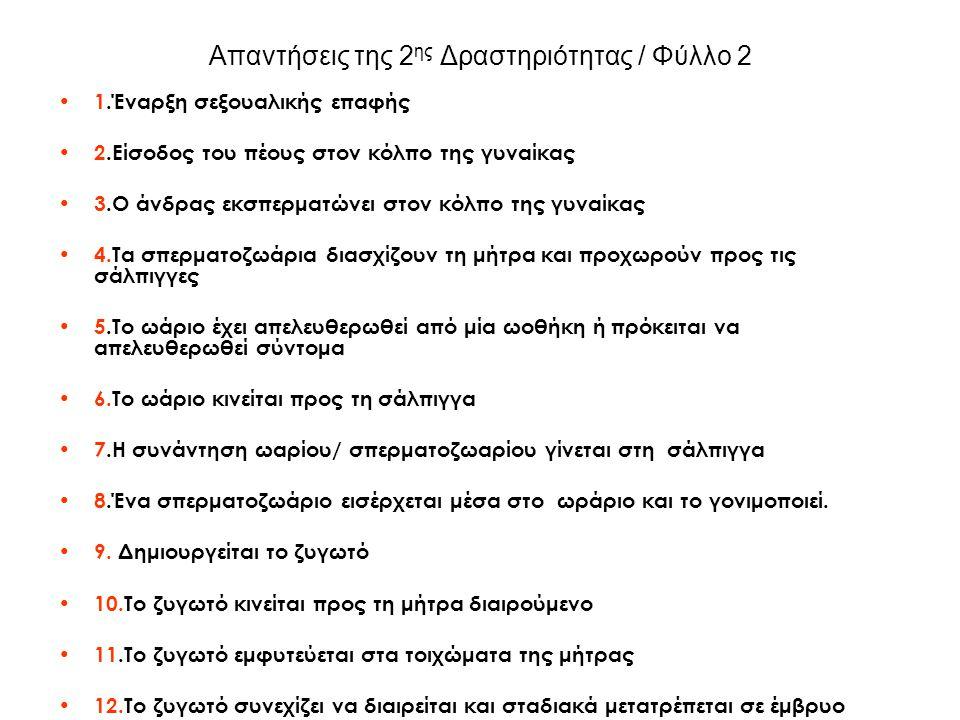 Απαντήσεις της 2ης Δραστηριότητας / Φύλλο 2