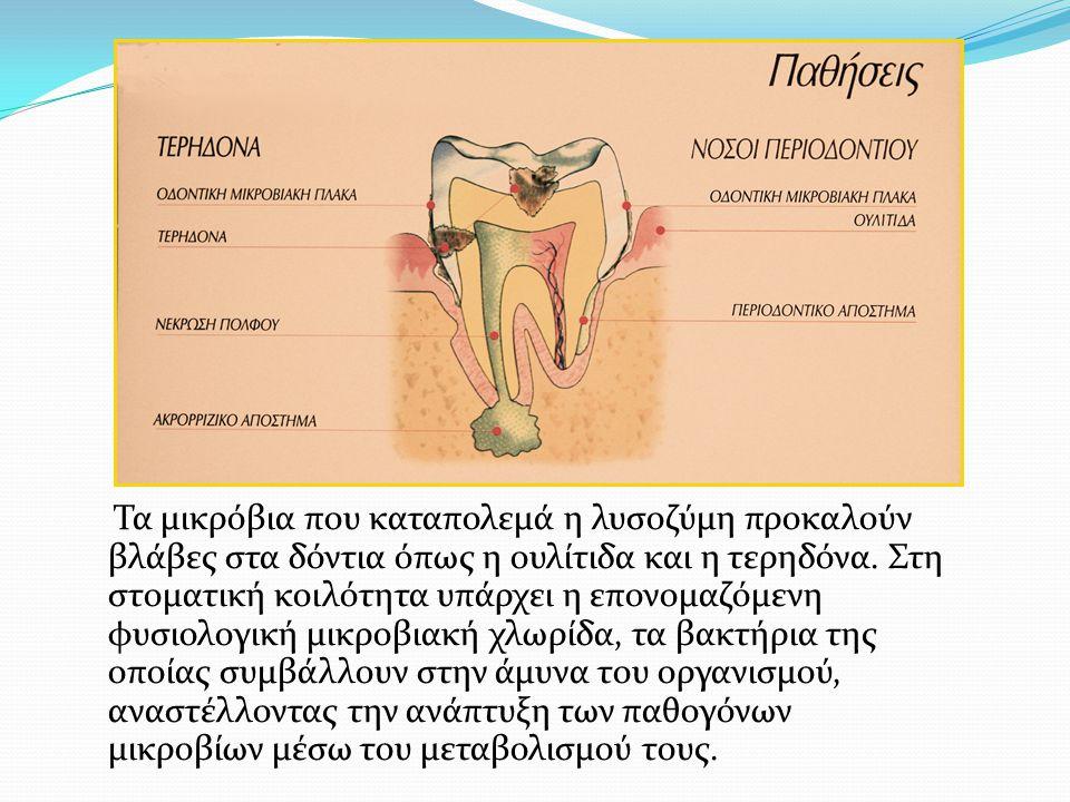 Τα μικρόβια που καταπολεμά η λυσοζύμη προκαλούν βλάβες στα δόντια όπως η ουλίτιδα και η τερηδόνα. Στη στοματική κοιλότητα υπάρχει η επονομαζόμενη φυσιολογική μικροβιακή χλωρίδα, τα βακτήρια της οποίας συμβάλλουν στην άμυνα του οργανισμού, αναστέλλοντας την ανάπτυξη των παθογόνων μικροβίων μέσω του μεταβολισμού τους.