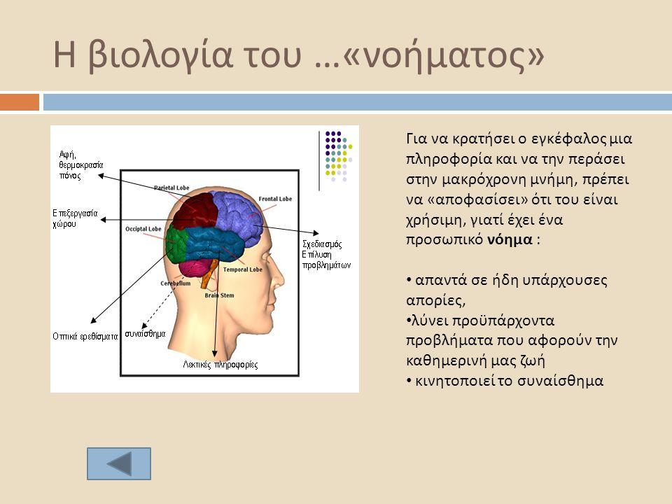 Η βιολογία του …«νοήματος»