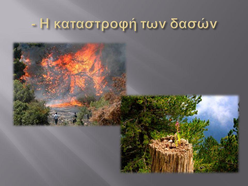 - Η καταστροφή των δασών