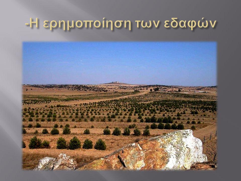 -Η ερημοποίηση των εδαφών
