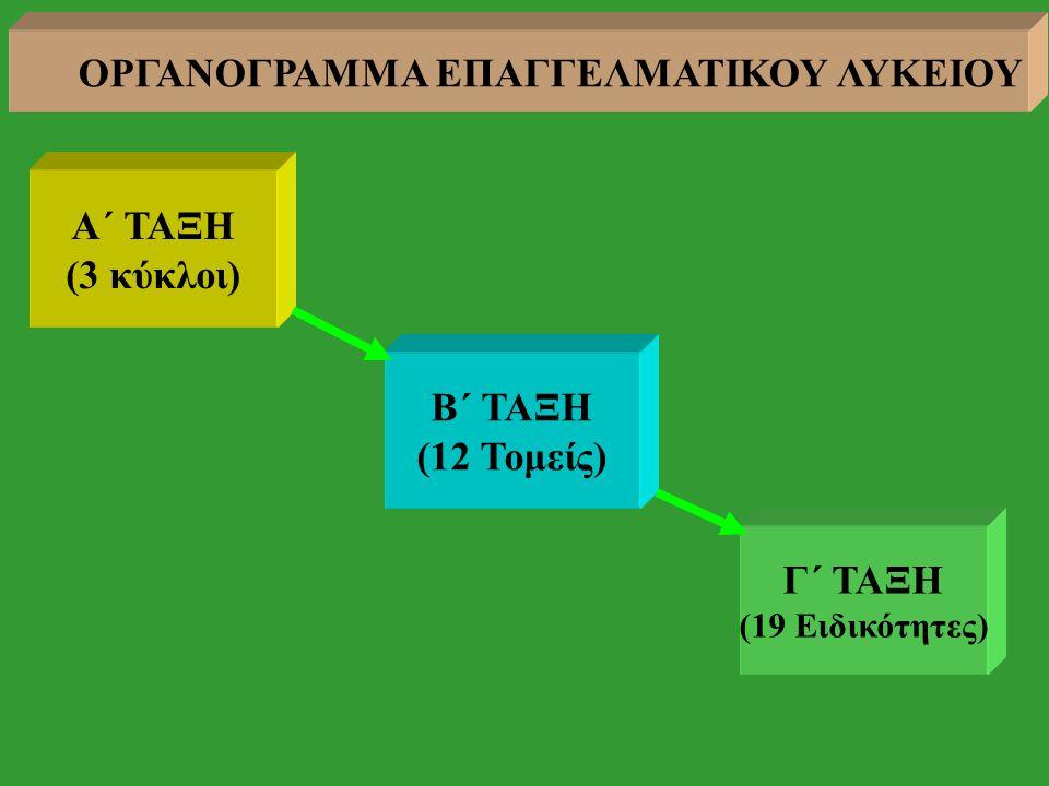 Α΄ ΤΑΞΗ (3 κύκλοι) Β΄ ΤΑΞΗ (12 Τομείς) Γ΄ ΤΑΞΗ