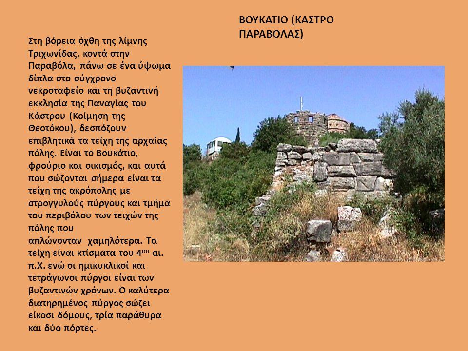 ΒΟΥΚΑΤΙΟ (ΚΑΣΤΡΟ ΠΑΡΑΒΟΛΑΣ)