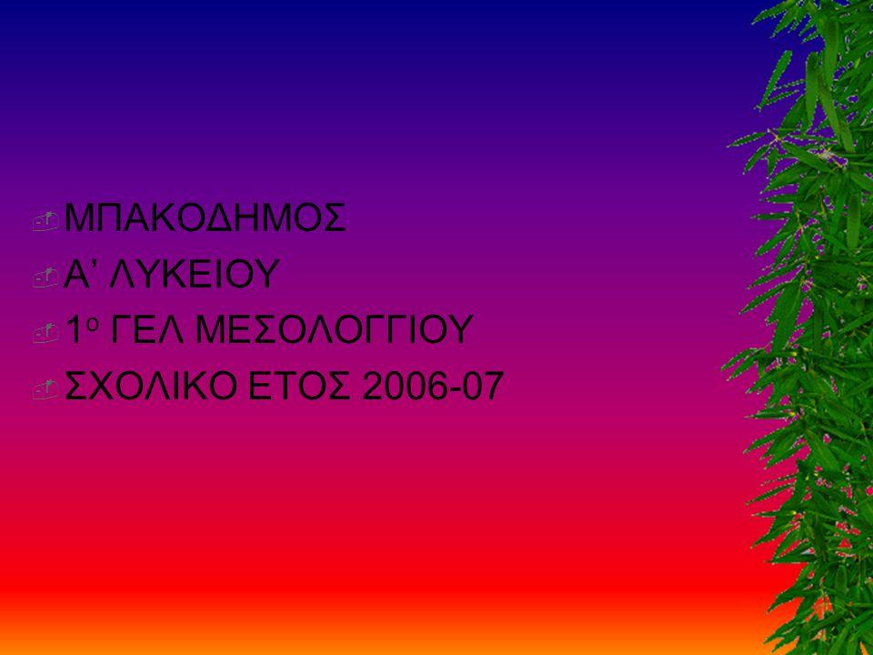 ΜΠΑΚΟΔΗΜΟΣ Α' ΛΥΚΕΙΟΥ 1ο ΓΕΛ ΜΕΣΟΛΟΓΓΙΟΥ ΣΧΟΛΙΚΟ ΕΤΟΣ 2006-07