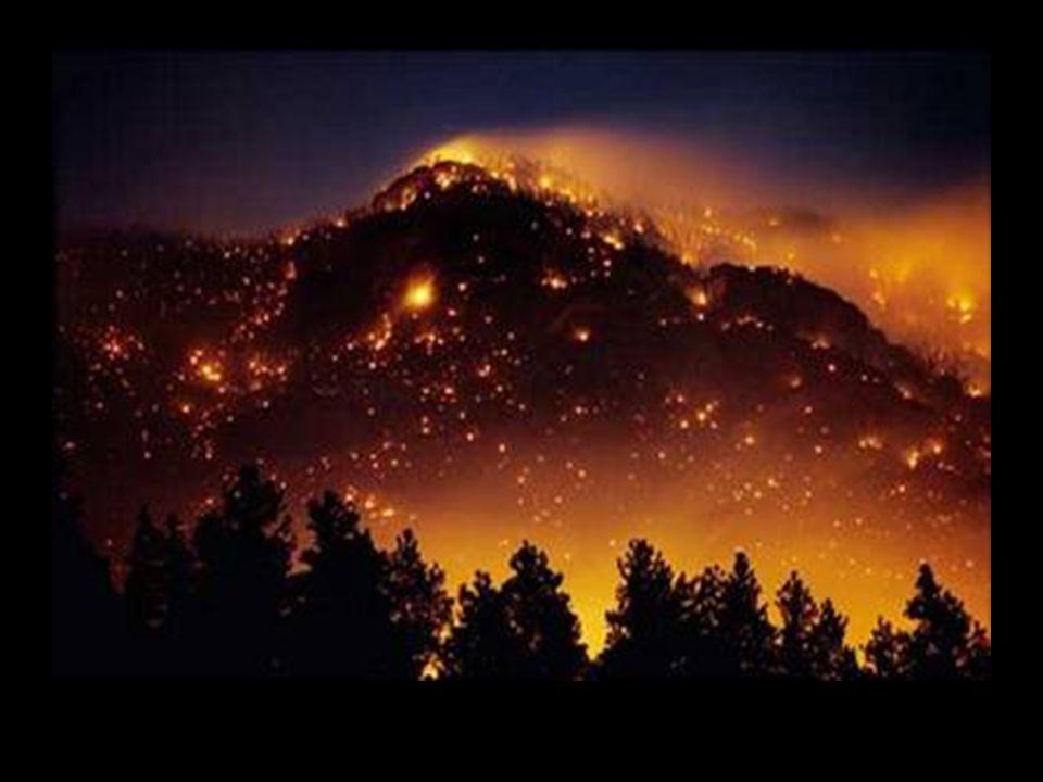 Το περασμένο καλοκαίρι μας θύμισε με ανατριχιαστικό τρόπο πόσο κινδυνεύουν από την φωτιά.