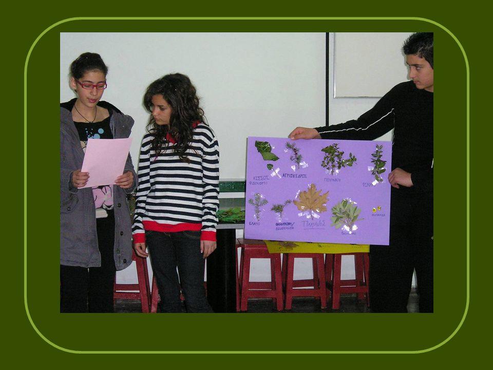 Στο κέντρο περιβαλλοντικής εκπαίδευσης Κλειτορίας