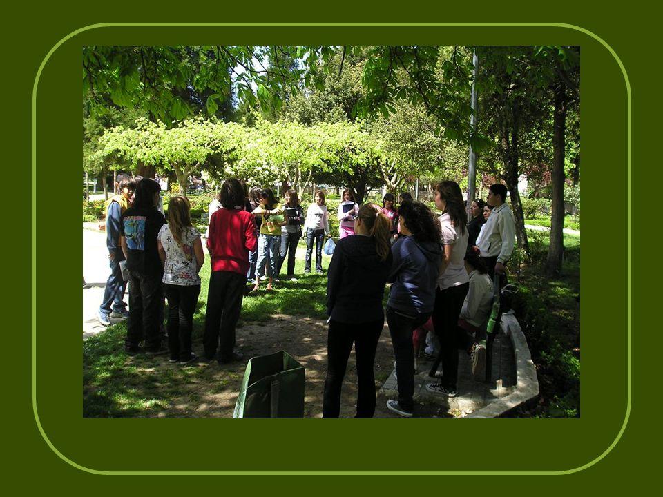 Στο πάρκο φιλλοδένδρων στην πλατεία Άρεως