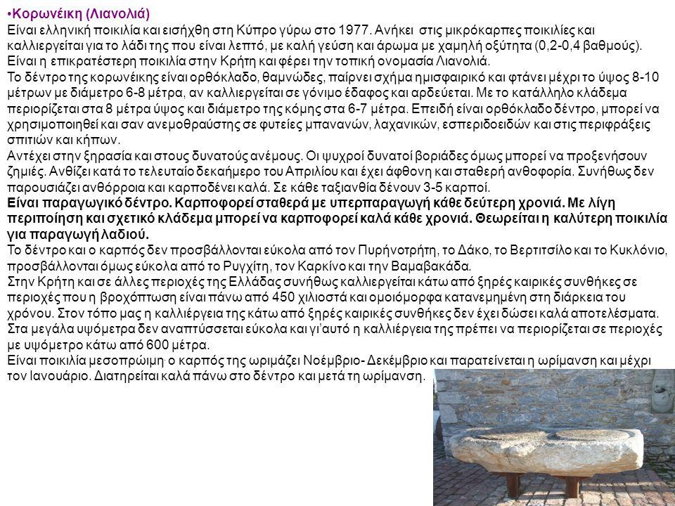Κορωνέικη (Λιανολιά)