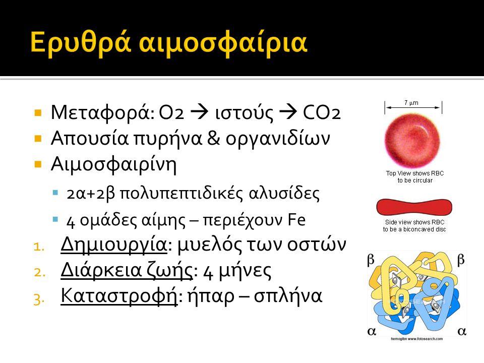 Ερυθρά αιμοσφαίρια Μεταφορά: Ο2  ιστούς  CO2