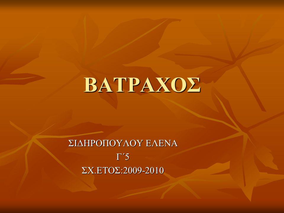 ΣΙΔΗΡΟΠΟΥΛΟΥ ΕΛΕΝΑ Γ΄5 ΣΧ.ΕΤΟΣ:2009-2010