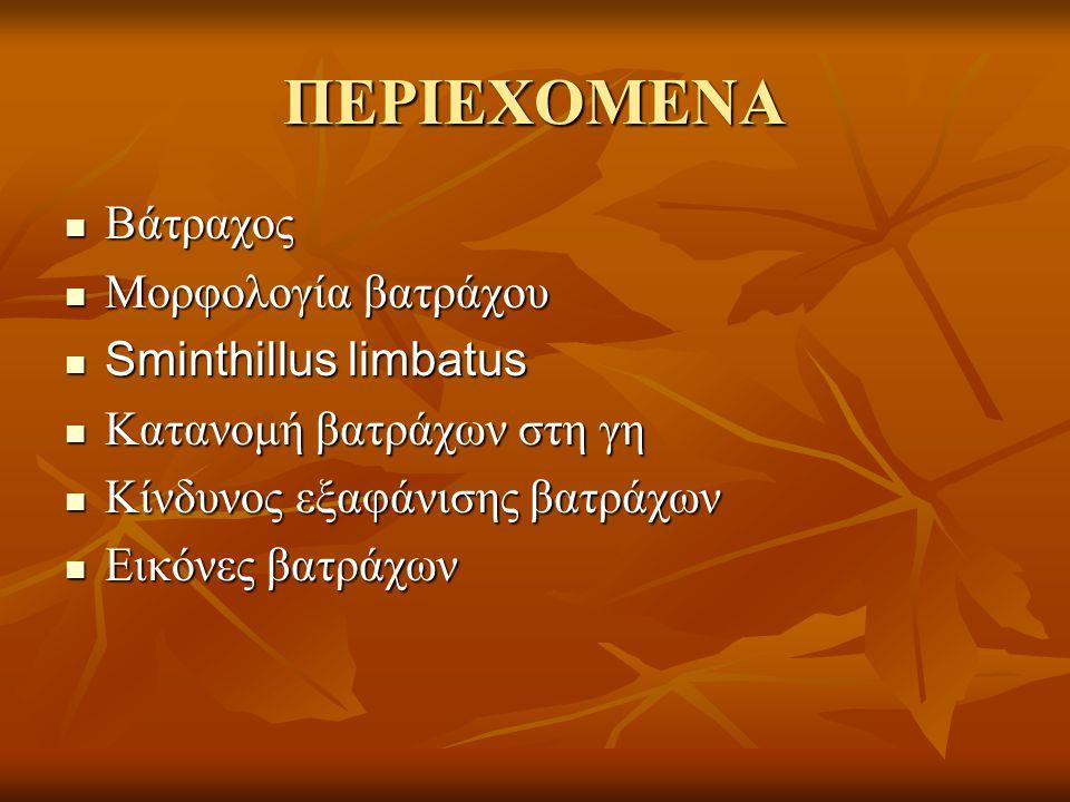 ΠΕΡΙΕΧΟΜΕΝΑ Βάτραχος Μορφολογία βατράχου Sminthillus limbatus