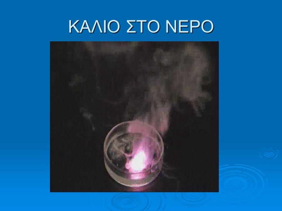 ΚΑΛΙΟ ΣΤΟ ΝΕΡΟ