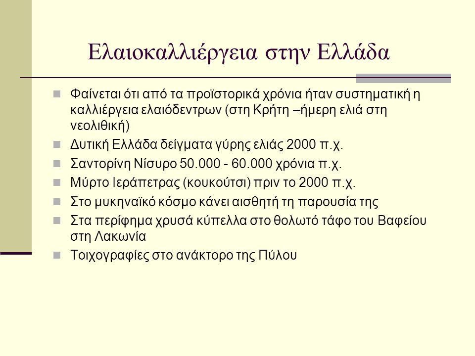 Ελαιοκαλλιέργεια στην Ελλάδα