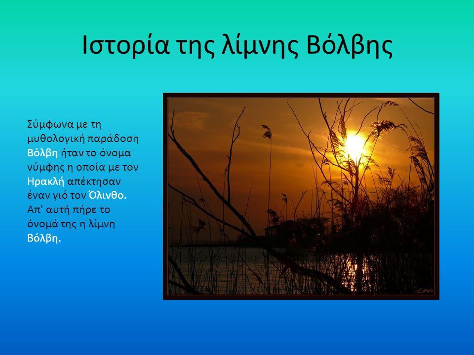 Ιστορία της λίμνης Βόλβης