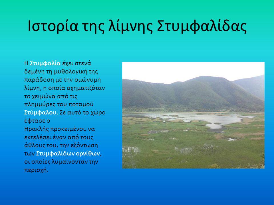 Ιστορία της λίμνης Στυμφαλίδας