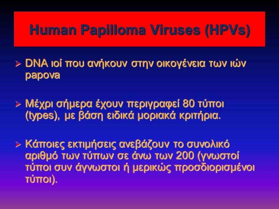 Human Papilloma Viruses (HPVs)