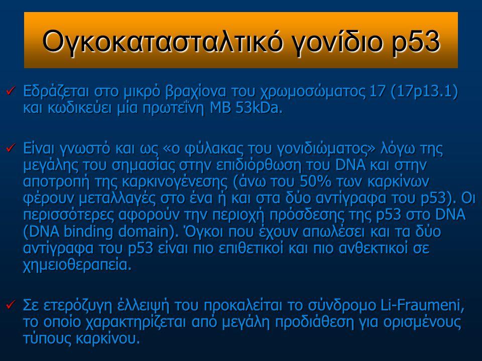 Ογκοκατασταλτικό γονίδιο p53