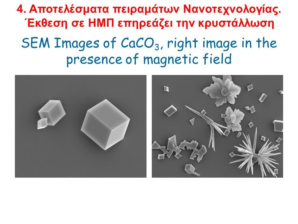 SEM Images of CaCO3, right image in the presence of magnetic field