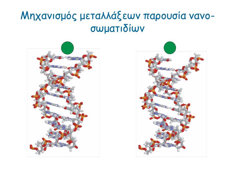 Μηχανισμός μεταλλάξεων παρουσία νανο-σωματιδίων