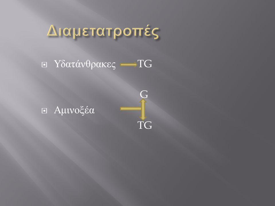 Διαμετατροπές Υδατάνθρακες TG G Αμινοξέα TG