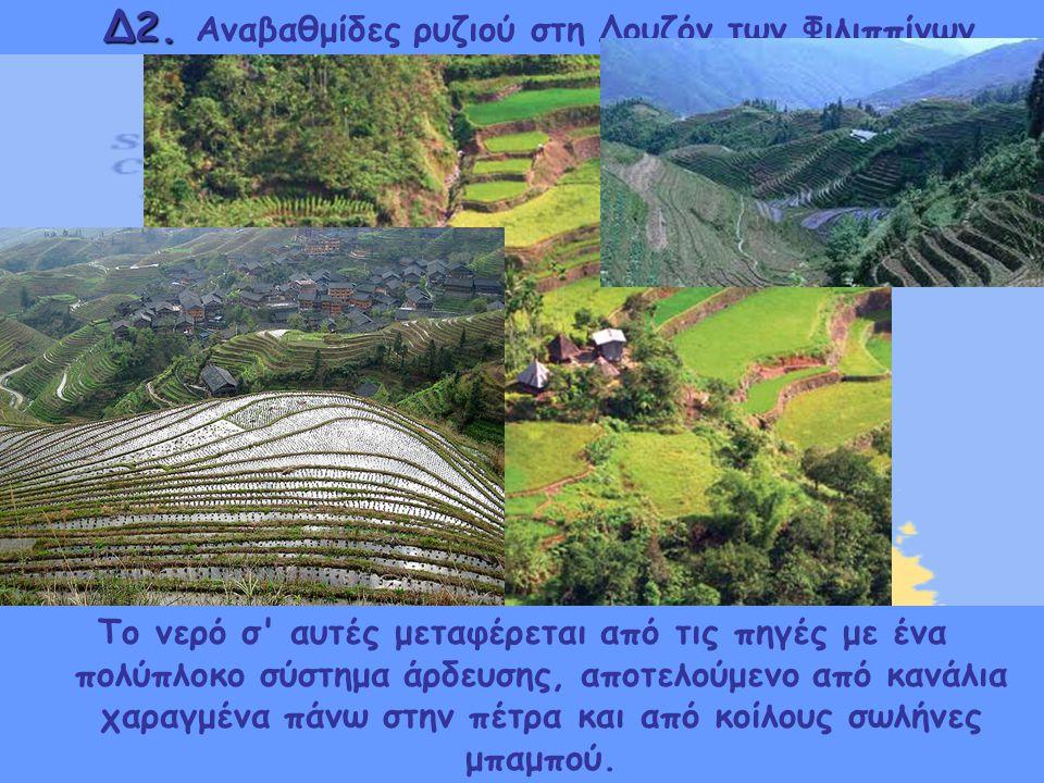 Δ2. Αναβαθμίδες ρυζιού στη Λουζόν των Φιλιππίνων