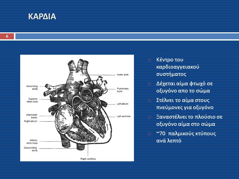 ΚΑΡΔΙΑ Κέντρο του καρδιοαγγειακού συστήματος