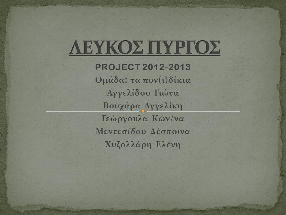 ΛΕΥΚΟΣ ΠΥΡΓΟΣ PROJECT 2012-2013 Ομάδα: τα πον(ι)δίκια Αγγελίδου Γιώτα