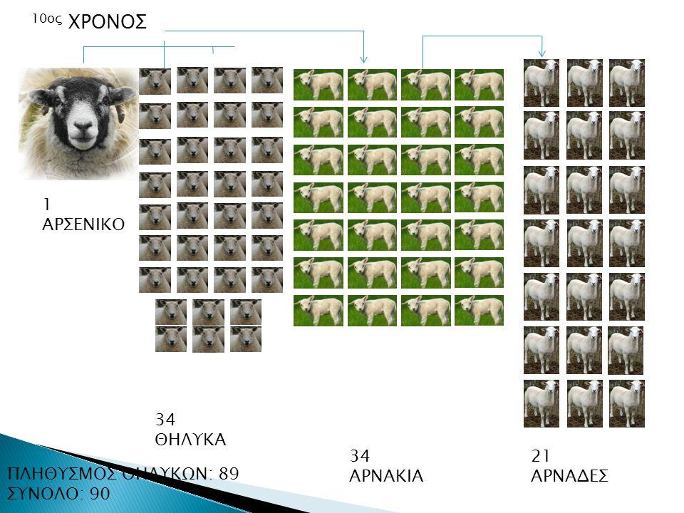 10ος ΧΡΟΝΟΣ 1 ΑΡΣΕΝΙΚΟ 34 ΘΗΛΥΚΑ 34 ΑΡΝΑΚΙΑ 21 ΑΡΝΑΔΕΣ